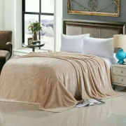 Плед плюшевый E-shine 2-спальный размер 160 на 200 (Бежевый)