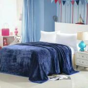 Плед плюшевый E-shine 2-спальный размер 160 на 200 (Синий)
