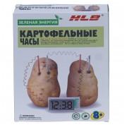 Набор зеленая энергия картофельные часы