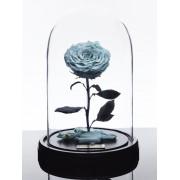 Вечная роза в колбе Красавица и Чудовище (Голубая)