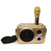 Домашняя караоке система SDRD SD-501 (Золотой)