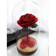 Вечная роза в колбе Красавица и Чудовище (Красная алая)