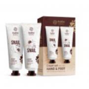 Набор AsiaKiss CREAM SET HAND & FOOT крема для рук и ног с экстрактом муцина улитки (Кремовый)