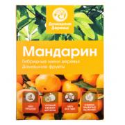 Гибридные мини деревья Мандарин (Оранжевый)