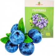 Набор для выращивания Домашние грядки Голубика (Зеленый)