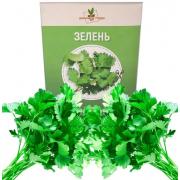 Набор для выращивания Домашние грядки Зелень (Зеленый)