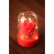 Светильник Роза Love в колбе (Красный)