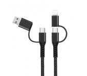 Универсальный кабель PD Fast Charger 4 в 1 USB-Type-C-Type-C-Lightning (Черный)