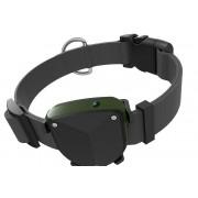 Ошейник для питомца с GPS трекером TD-05D (Черный)