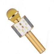 Караоке-микрофон Wster WS-858 (Золотистый)