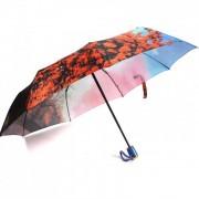 Зонт женский автоматический Pasio PS-125-2 (Оранжево-голубой)