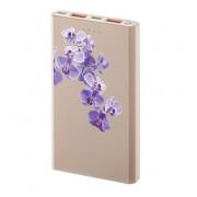 Interstep Внешний аккумулятор PB10000MC micro/TypeC Орхидея роз