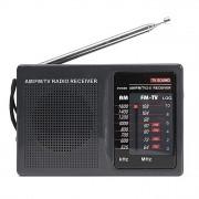 Радиоприемник Tecsun R202T (Черный)
