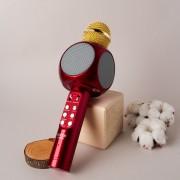 Беспроводной караоке-микрофон Wster WS-1816 со встроенной колонкой (красный)