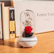 Лампа с диффузором эфирного масла Роза под куполом (Красный)