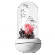 Лампа с диффузором эфирного масла Роза под куполом (Розовый)